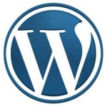Experienced WordPress Website Design Professional